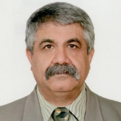 Saeid Naeimi-Manesh Mortgage Broker